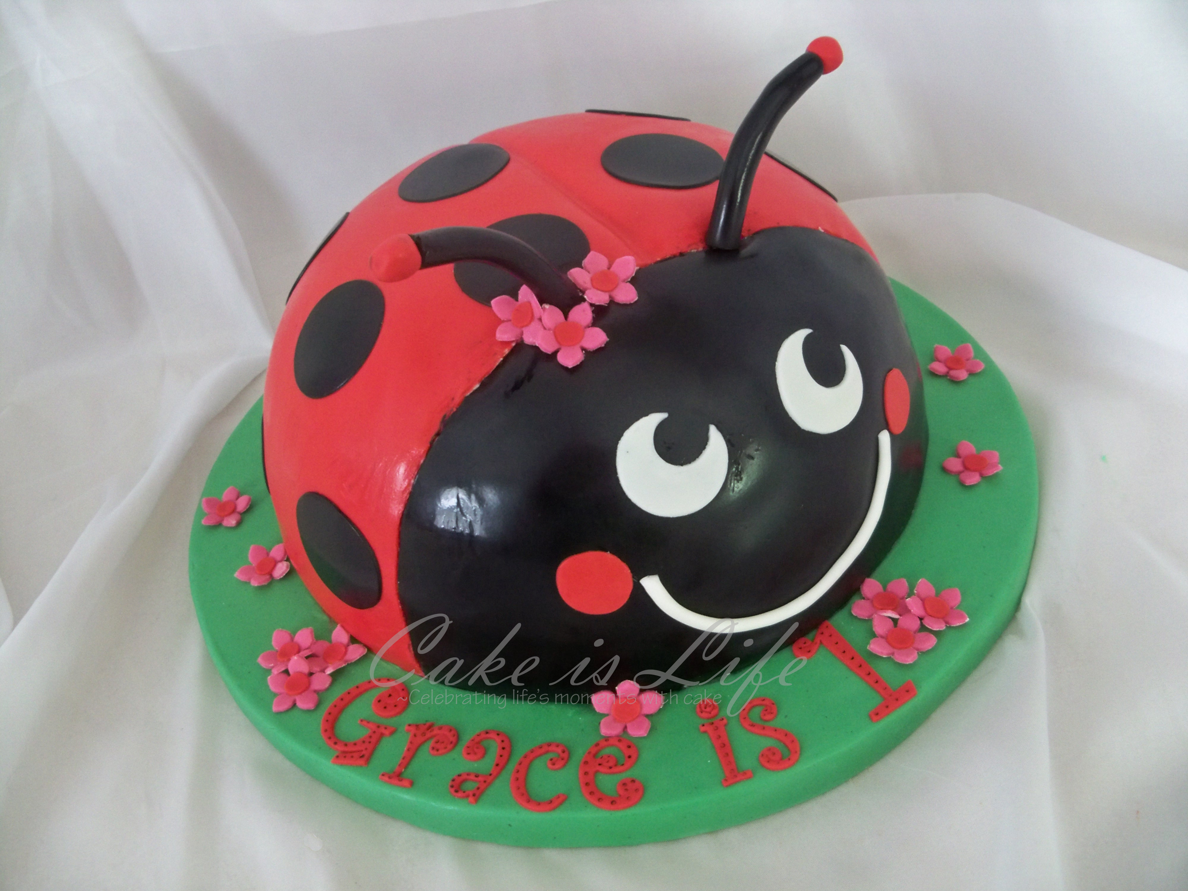 Ladybug Baby Shower Birthday Cake
